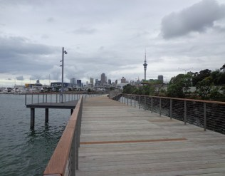 Westhaven Promenade - short walks in Auckland