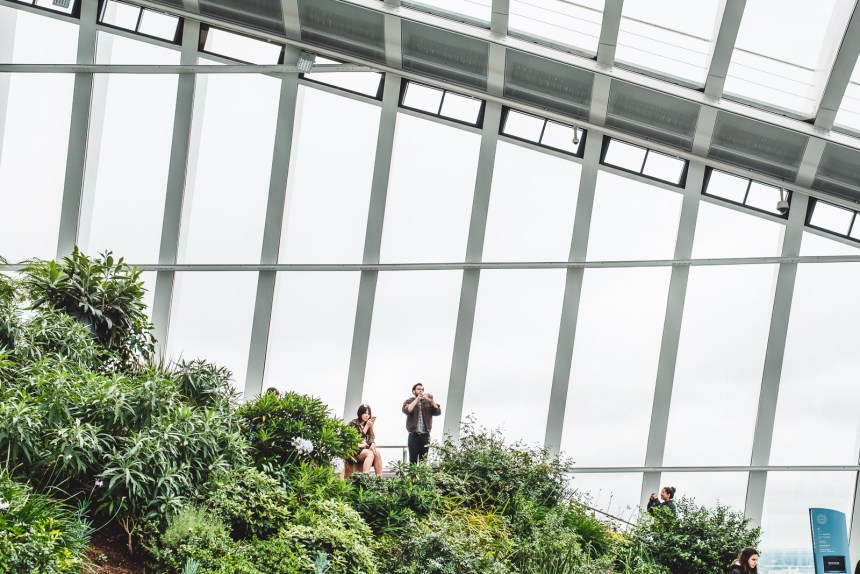 Sky Garden The Best Free Views of London From A Rooftop Garden