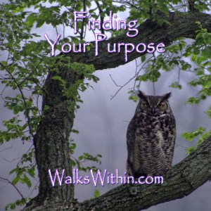 Finding Your Purpose Guided Meditation