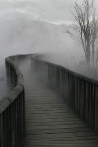 path into fog