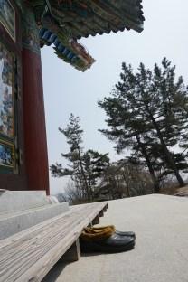 A monk's shoes