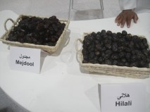 Hilali and Mejdool dark variety.
