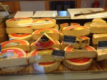 Assorted Cheese on display