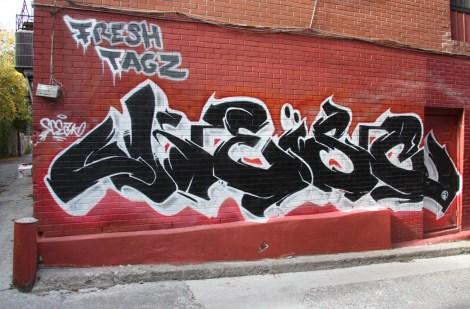 graffiti by Fresh Tagz in Roy alley