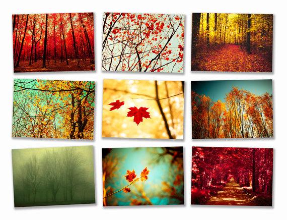 Autumn Photography Wall Decor