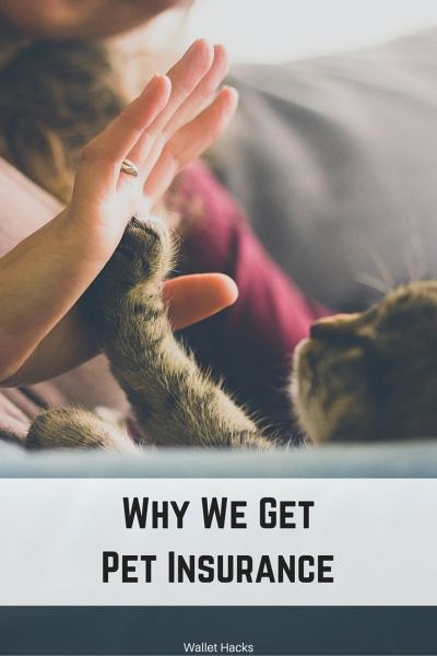 There's a very specific reason why we have pet insurance. It may not be what you think...
