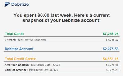 debitize-weekly-summary