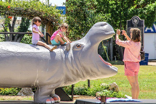 Henrietta the Hippo
