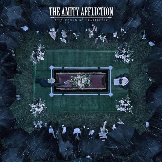 amity this could