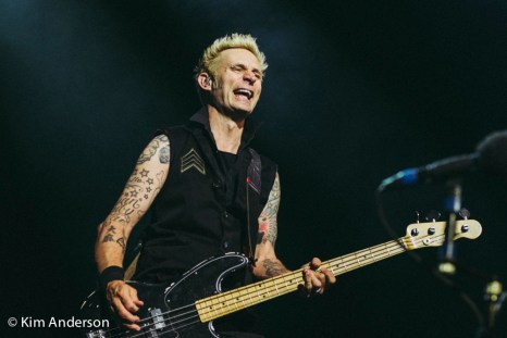Green Day-088