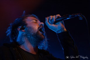beartooth (18)