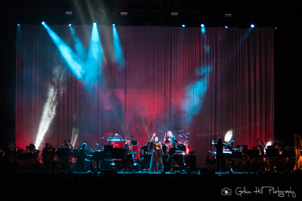Evanescence (13)