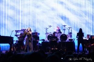 Evanescence (17)