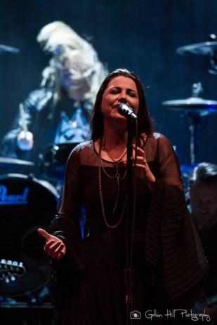 Evanescence (4)