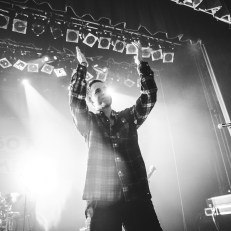 The Story So Far (12 of 20)