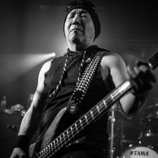 Loudness-15