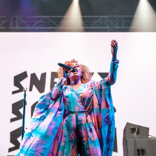 Sneaky Sound System-1