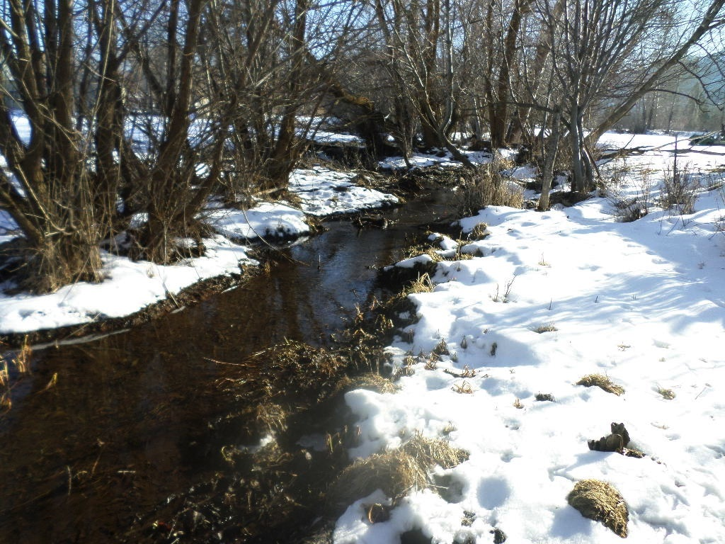The water runs year around and is a bit thermal so if doesn't freeze up in the Winter months. Ample water rights for irrigation of the pastures.