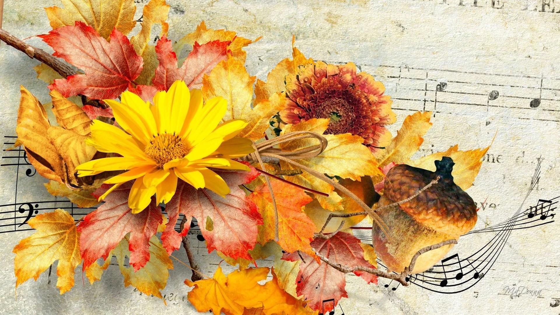 46 Fall Flowers