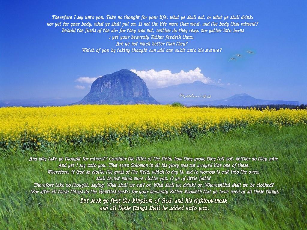 Matthew 6 25 33 Wallpaper