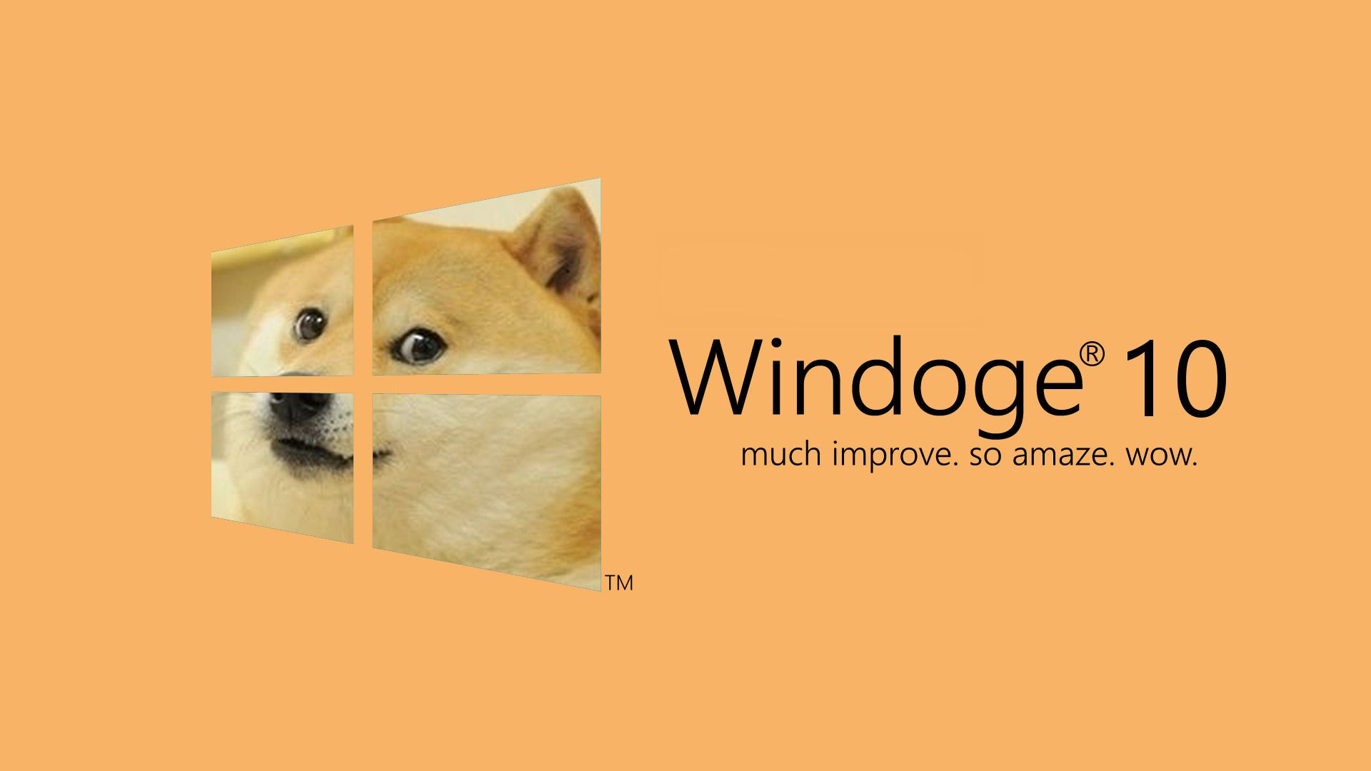 Free Download Desktop Wallpapers Backgrounds Dog Wallpapers For