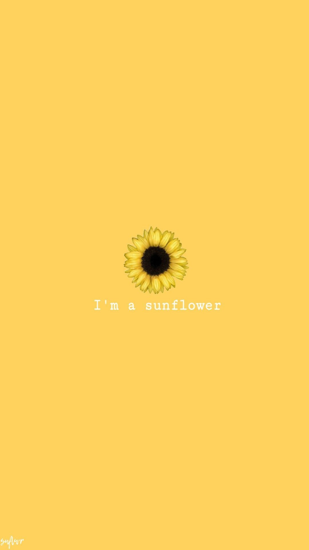 Sunflower Phone Wallpapers Top Free Sunflower Phone Backgrounds Wallpaperaccess