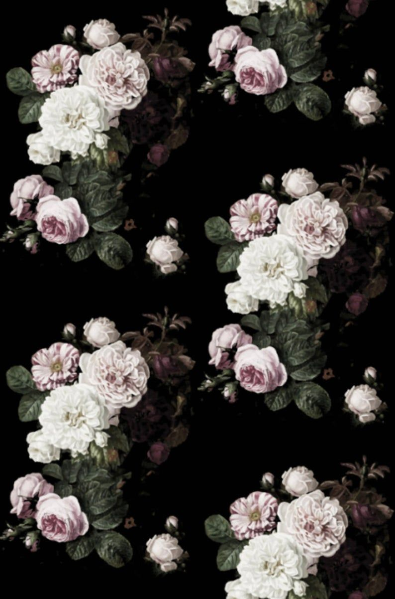 Black Vintage Rose Wallpapers Top Free Black Vintage Rose Backgrounds Wallpaperaccess
