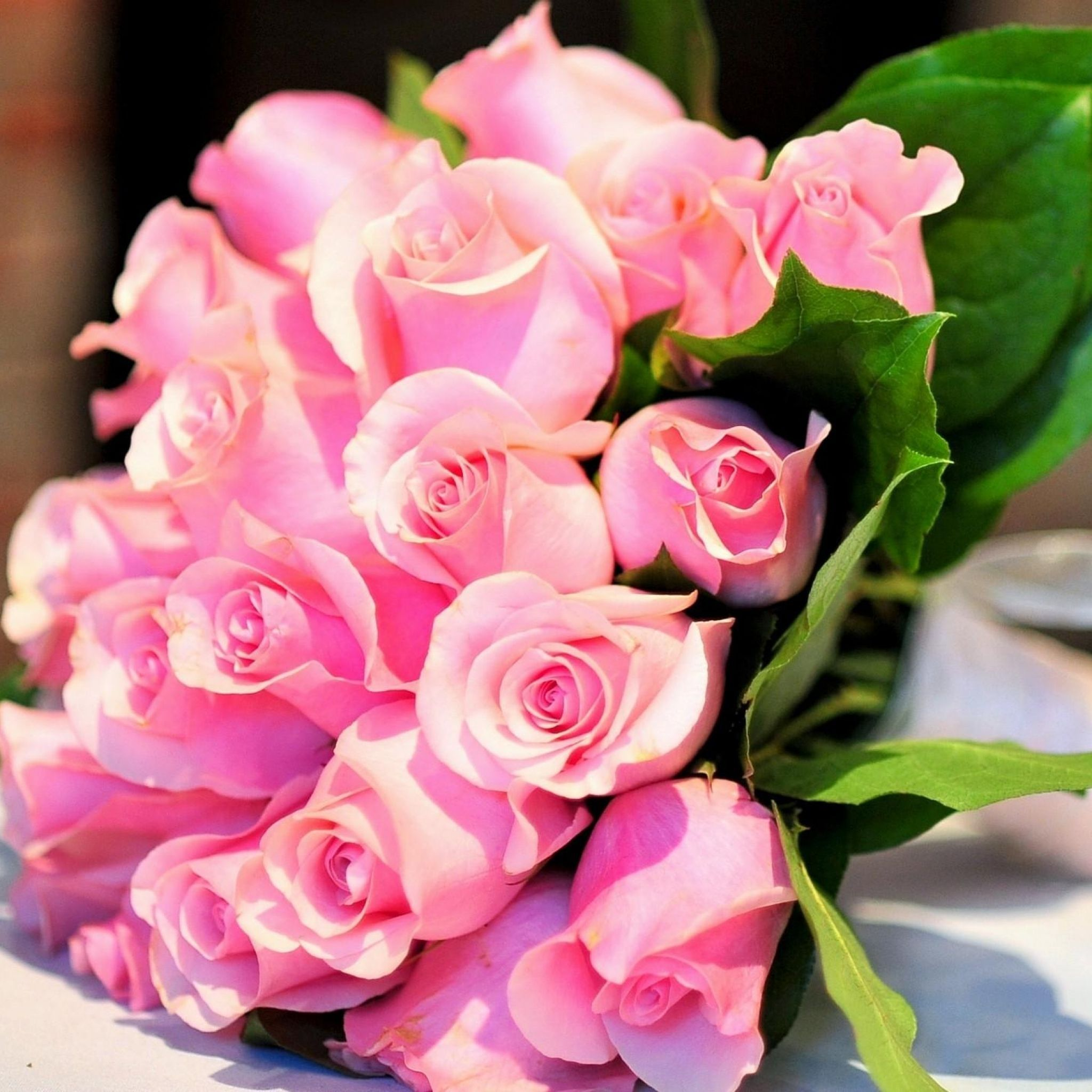 Most Beautiful Pink Flowers Wallpapers Top Free Most Beautiful Pink Flowers Backgrounds Wallpaperaccess