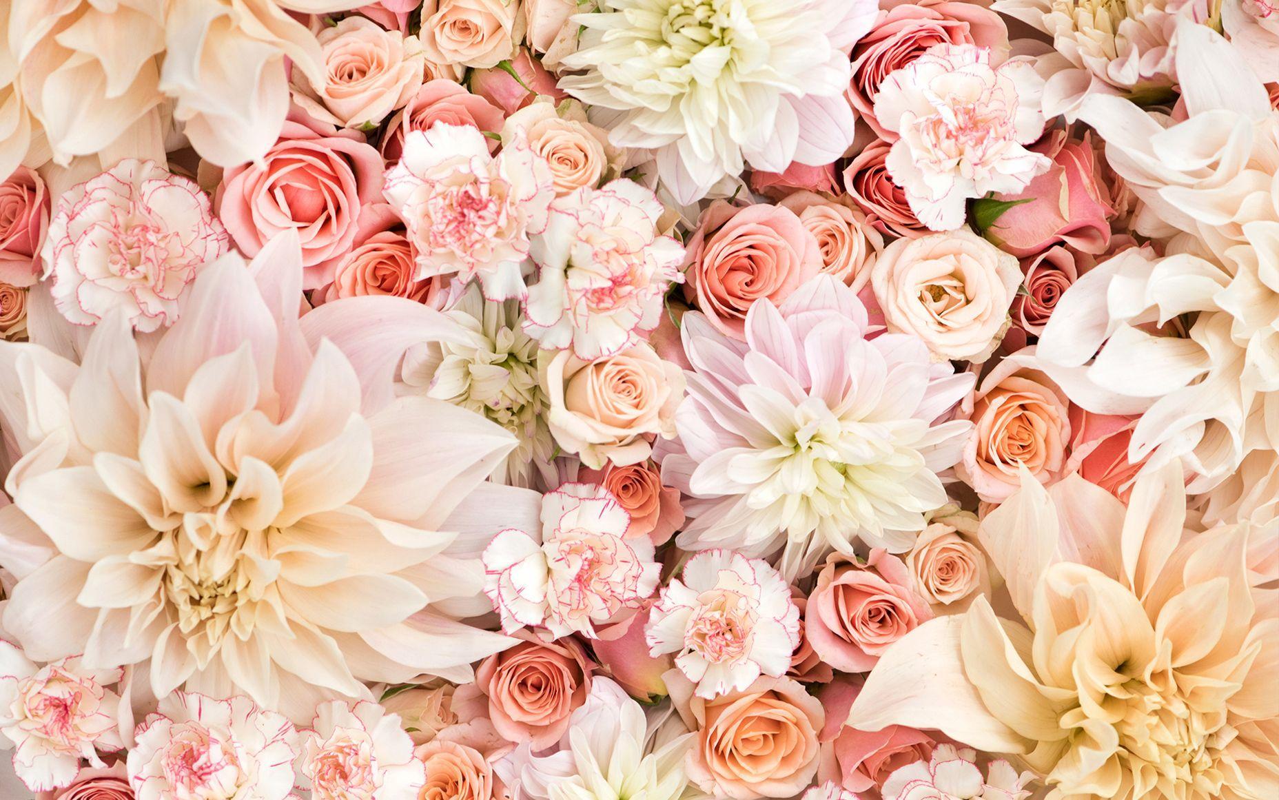 Floral Desktop Wallpapers Top Free Floral Desktop Backgrounds Wallpaperaccess