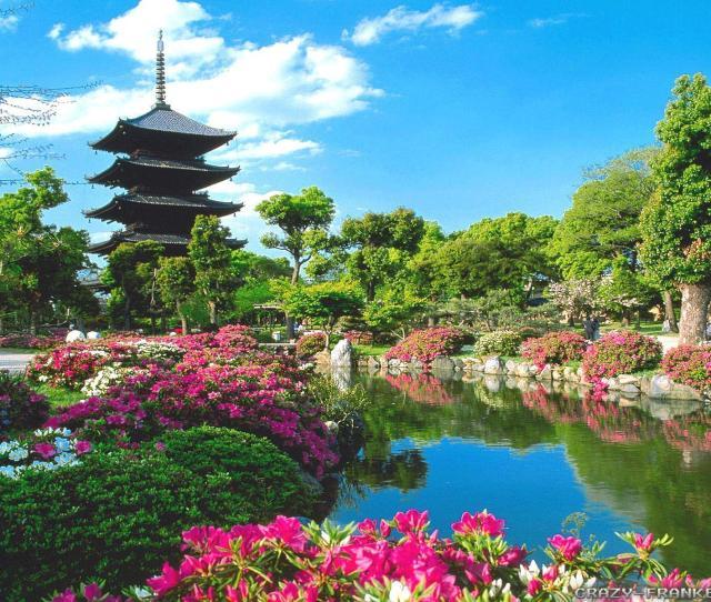 1280x960 Full Hd P Japan Wallpapers Hd Desktop Backgrounds 1680x1050