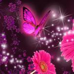 Purple Glitter Butterfly Wallpapers Top Free Purple Glitter Butterfly Backgrounds Wallpaperaccess