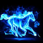 Fire Horse Wallpapers Top Free Fire Horse Backgrounds Wallpaperaccess