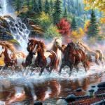 Seven Horses Wallpapers Top Free Seven Horses Backgrounds Wallpaperaccess