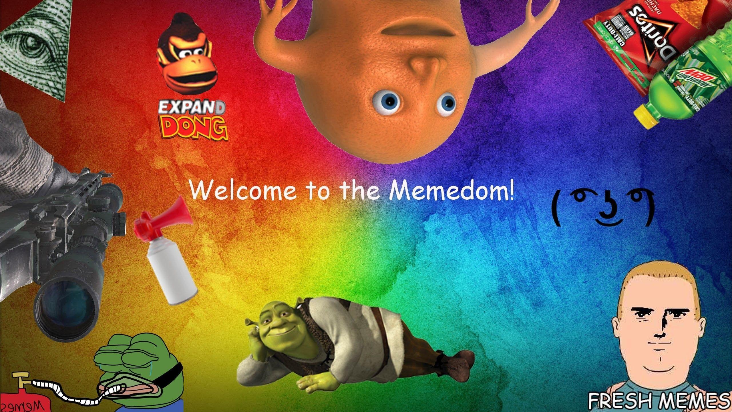 Dank Meme Wallpapers Top Free Dank Meme Backgrounds Wallpaperaccess