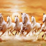 Horse Painting Wallpapers Top Free Horse Painting Backgrounds Wallpaperaccess