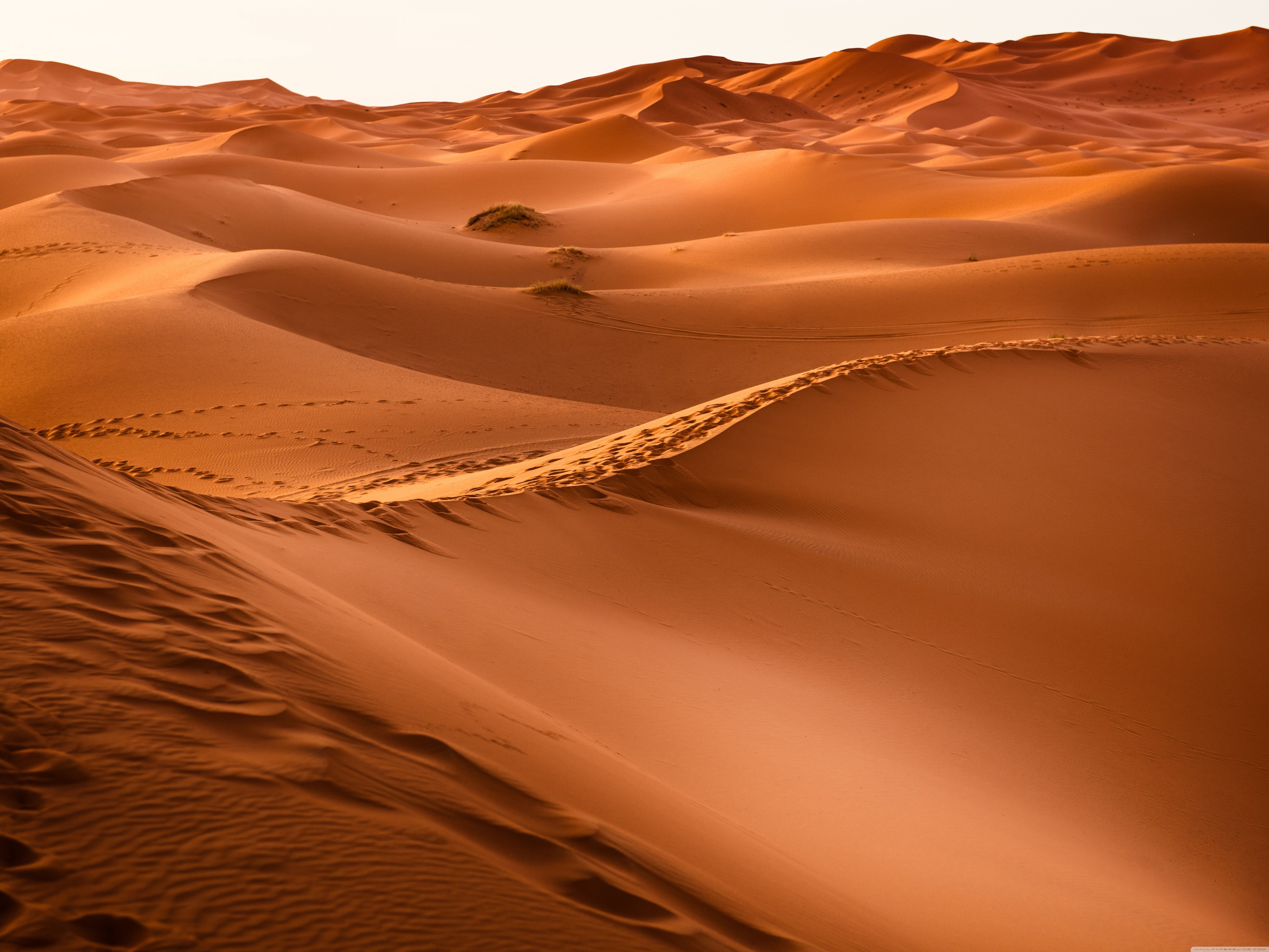 Desert Hd Wallpapers Top Free Desert Hd Backgrounds Wallpaperaccess