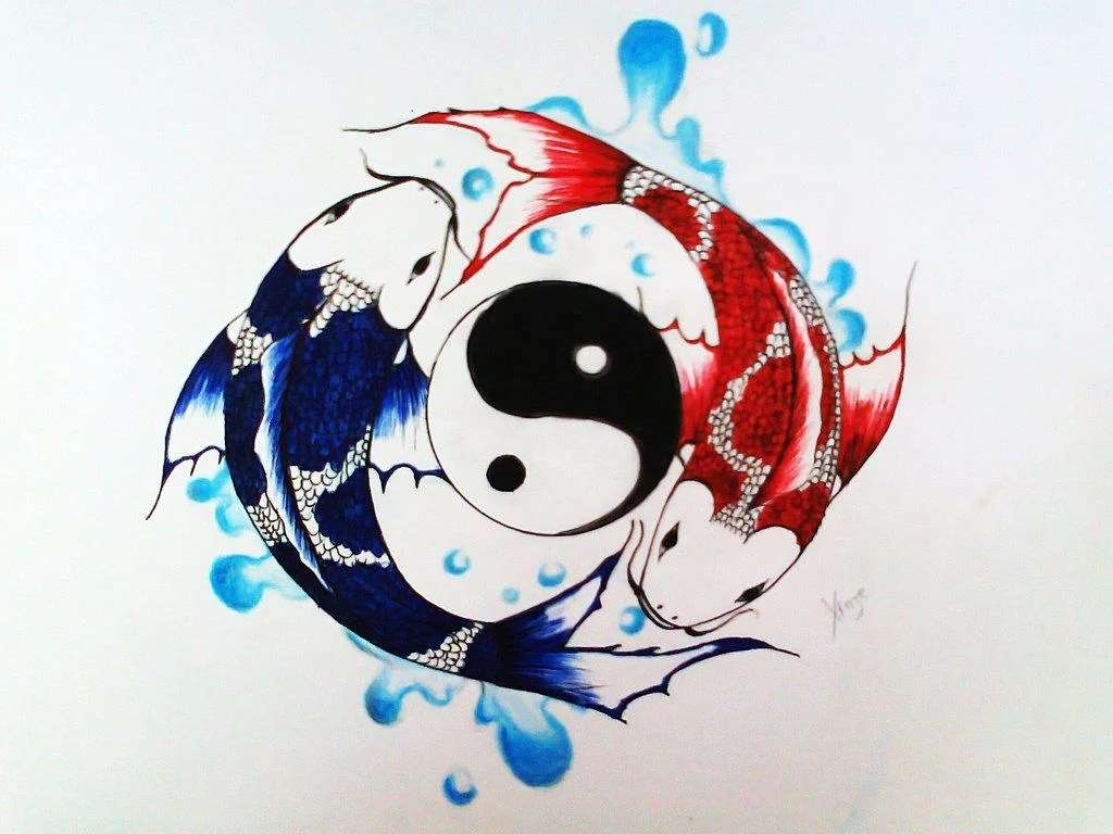 Koi Fish Yin And Yang Wallpaper Iphone Novocom Top