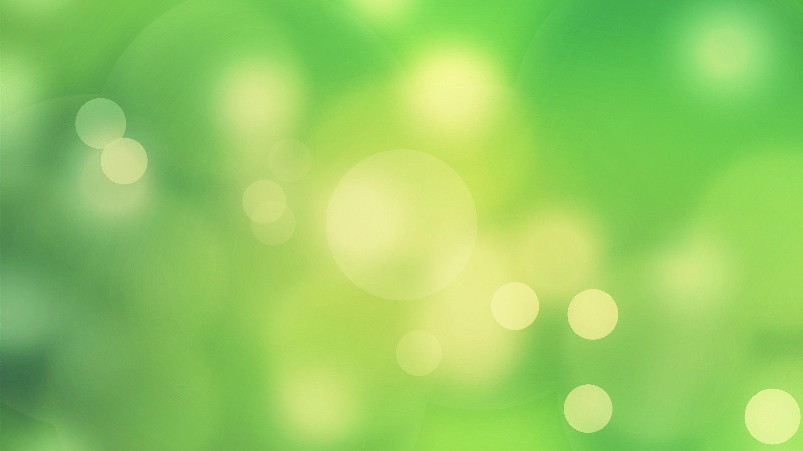 Light Green Desktop Wallpapers Top Free Light Green Desktop Backgrounds Wallpaperaccess