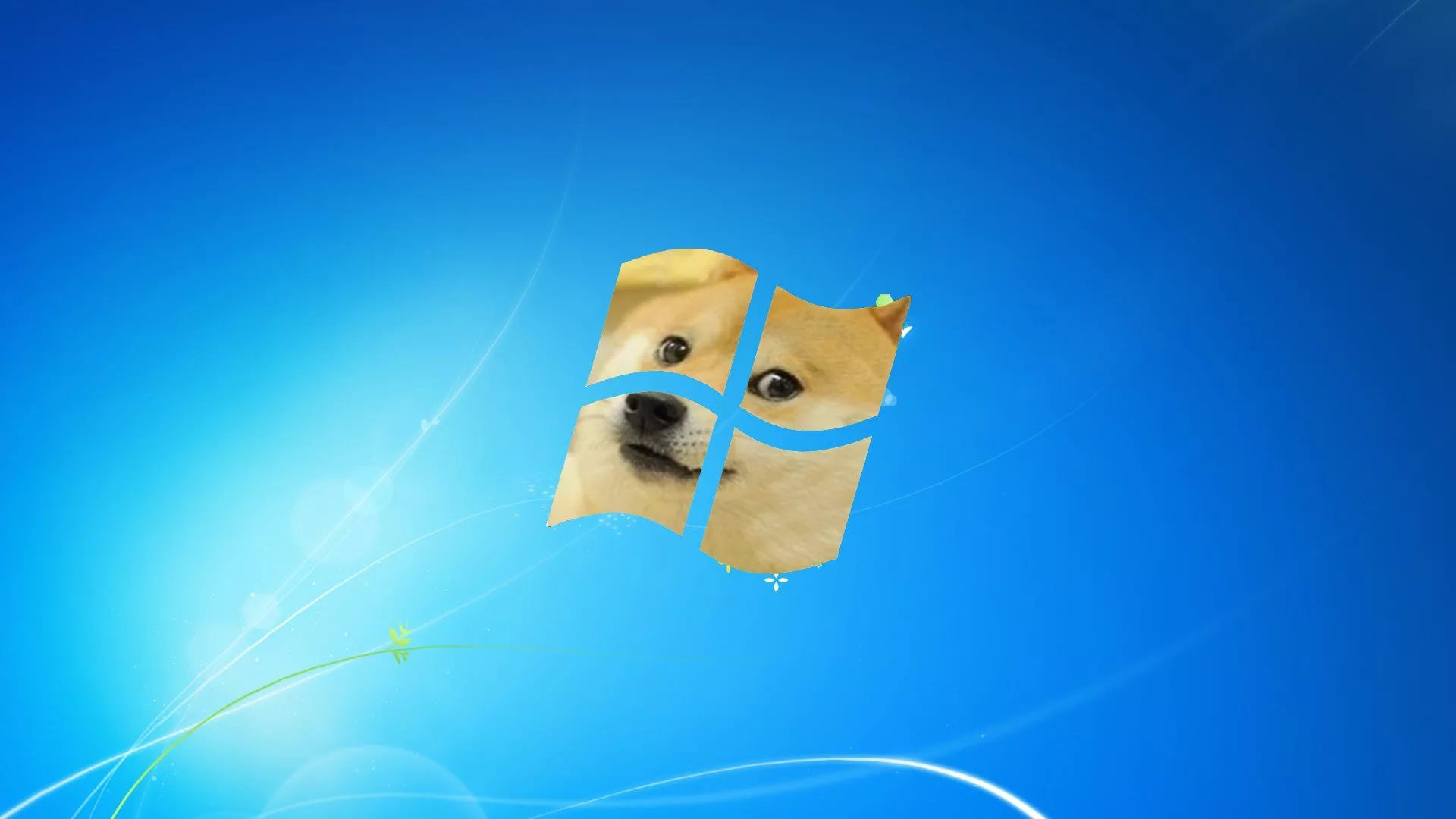 Wiener Dog Meme 700x863 Wallpaper Teahub Io
