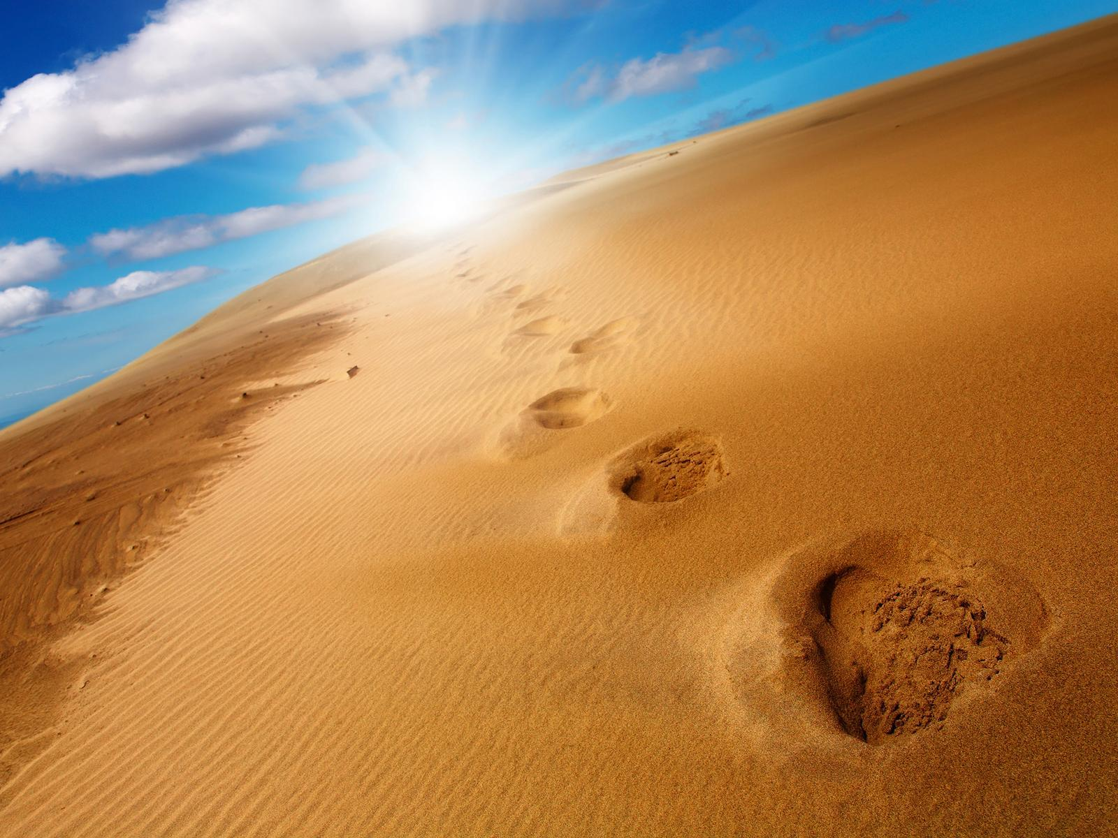 Footprints In The Sand Wallpapers