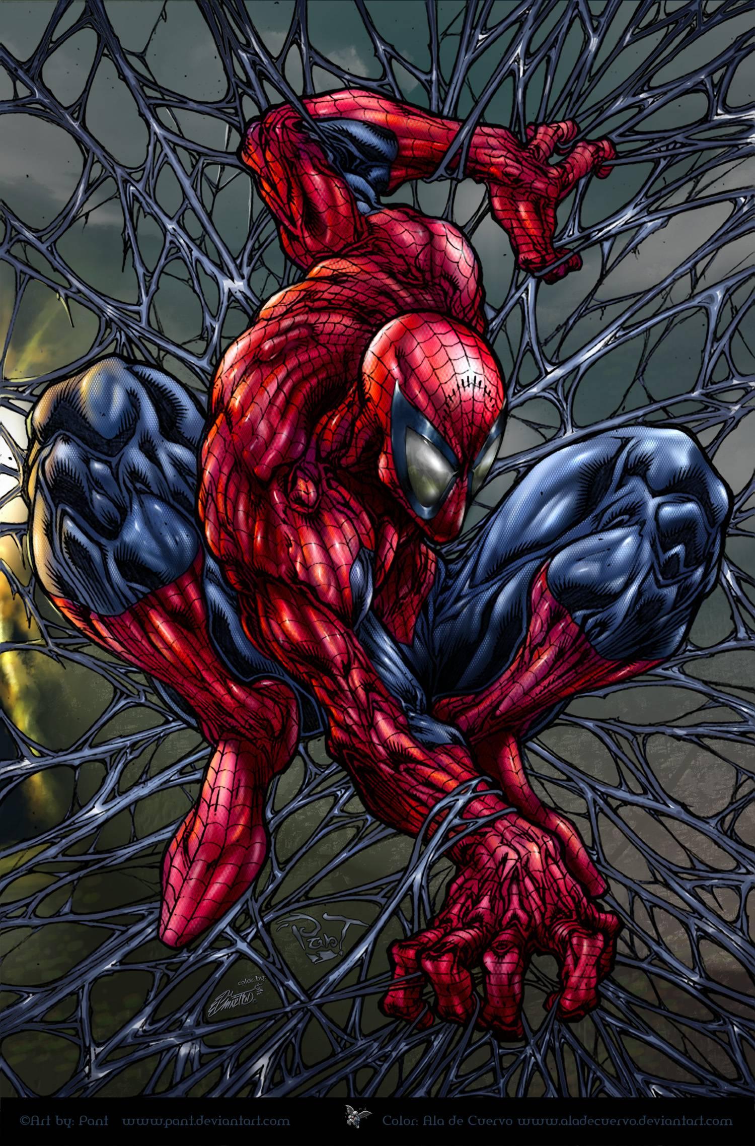 Spider Man Cartoon Wallpapers