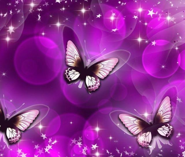 Wallpapers For Black And Pink Butterfly Wallpaper