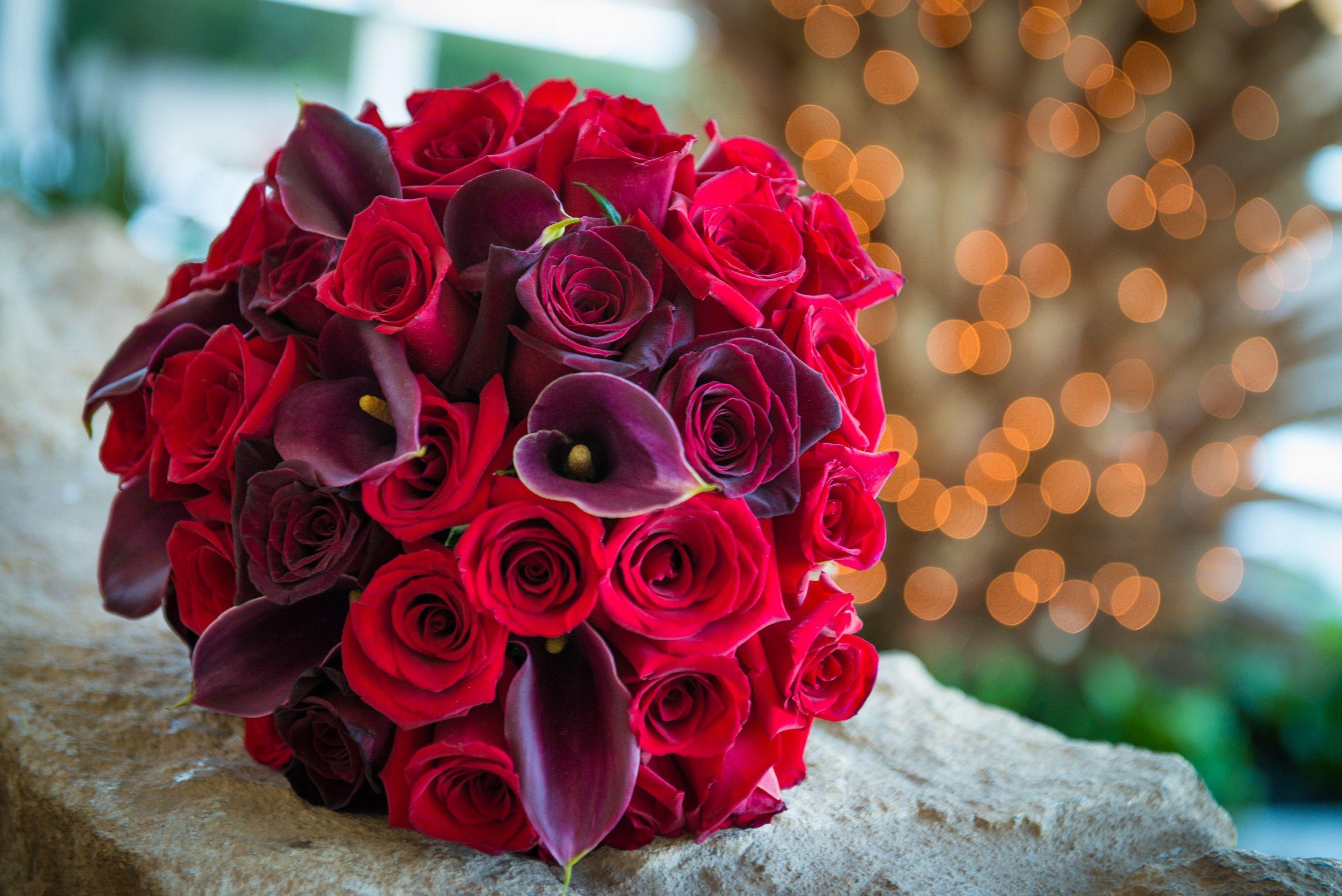 Red Rose Bokeh Wallpapers