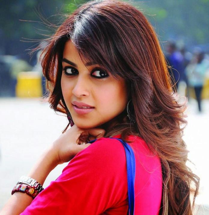 Genelia D'Souza All Films Hit Flop Box Office Verdict