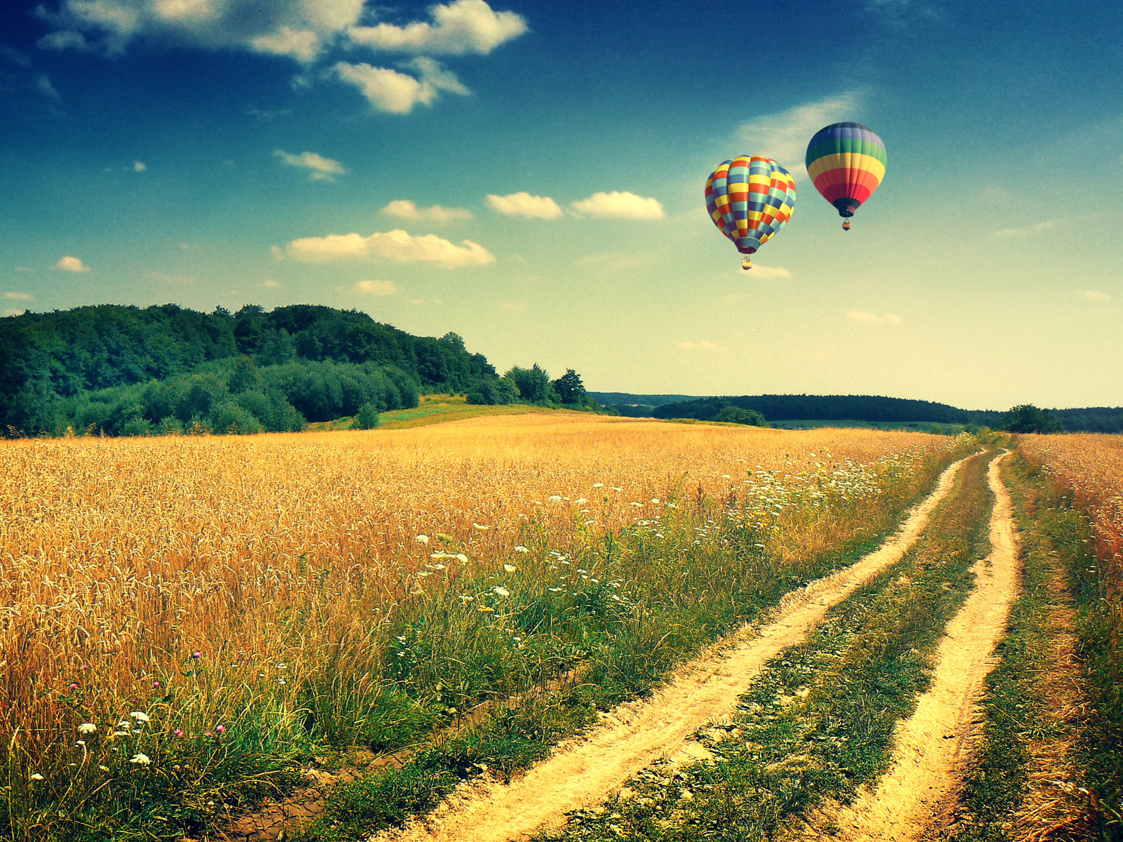 Full Color Free hd wallpapers Page 0   WallpaperLepi Couple Air Balloon Wallpaper Android