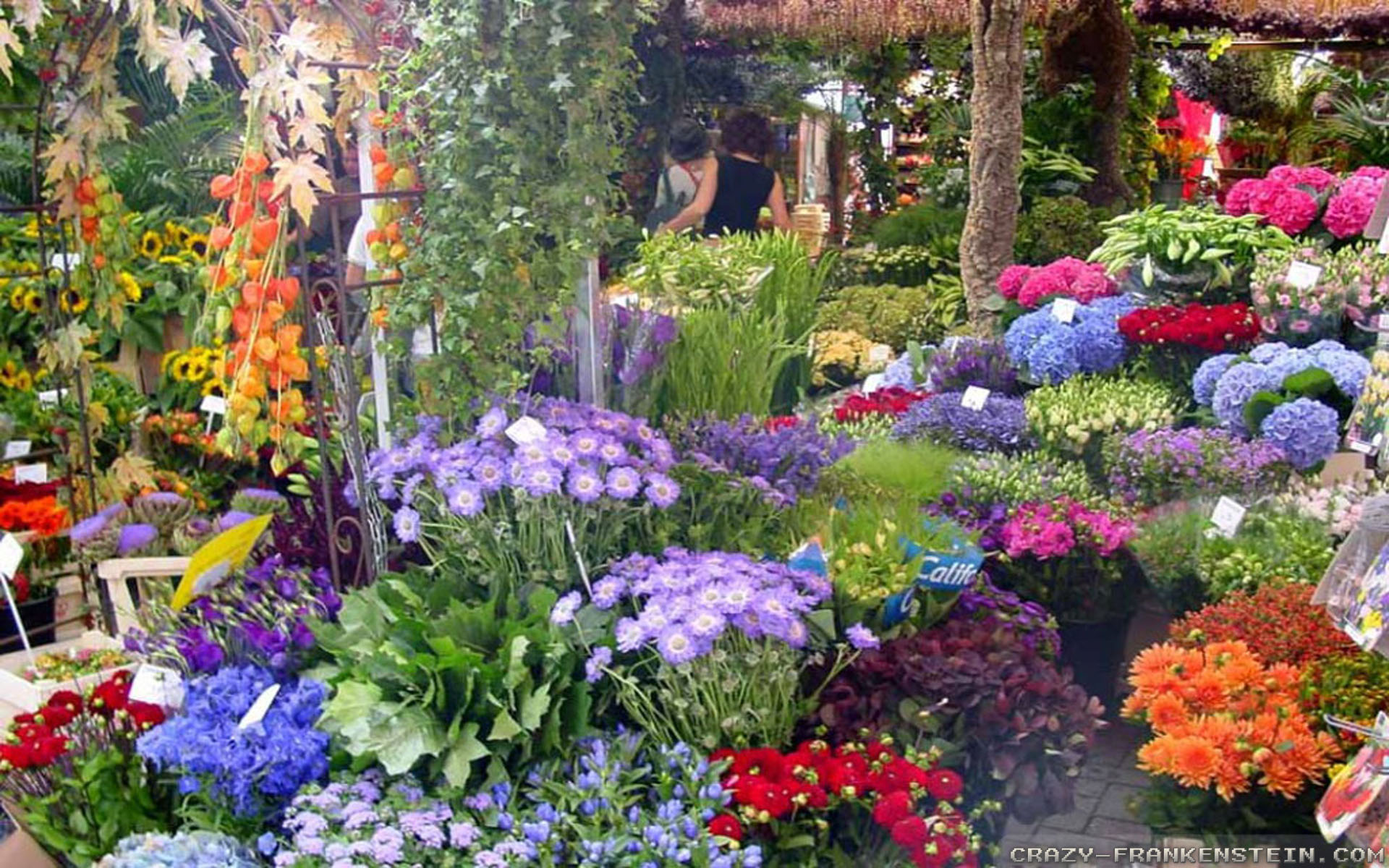 Better Homes And Gardens Easter Ideas