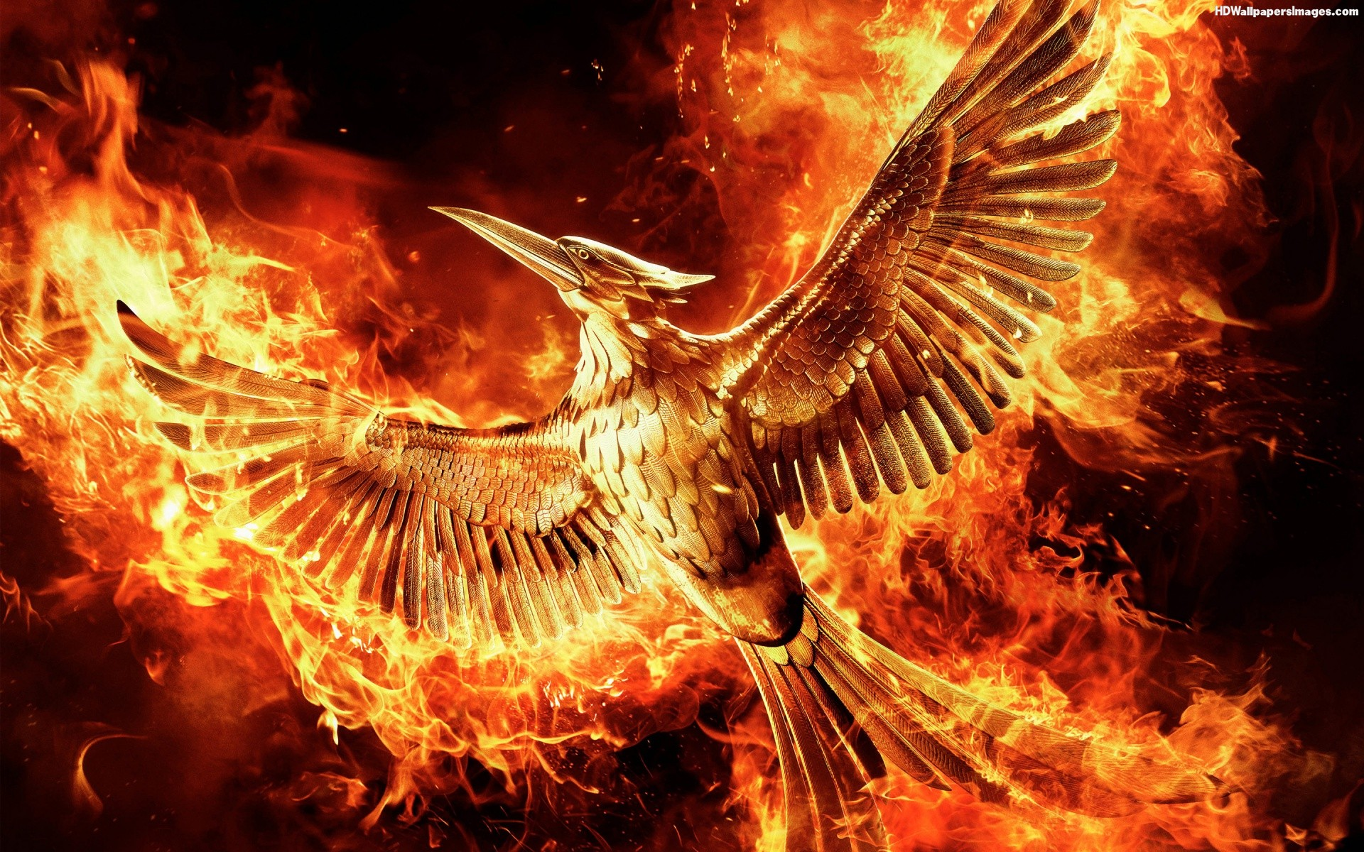 The Hunger Games Mockingjay Part 2 Hd Wallpapers Download