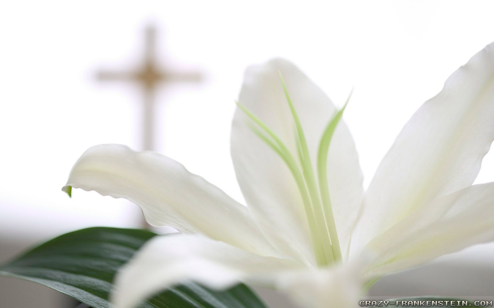 Christian Easter Wallpaper 52 Pictures
