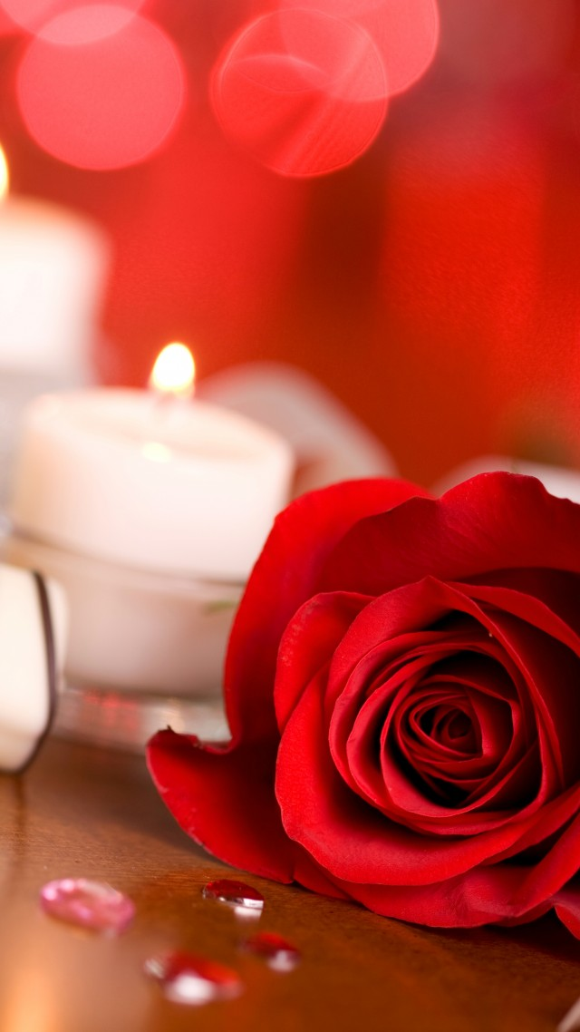 Wallpaper Valentines Day Rose Candle Ribbon Romantic