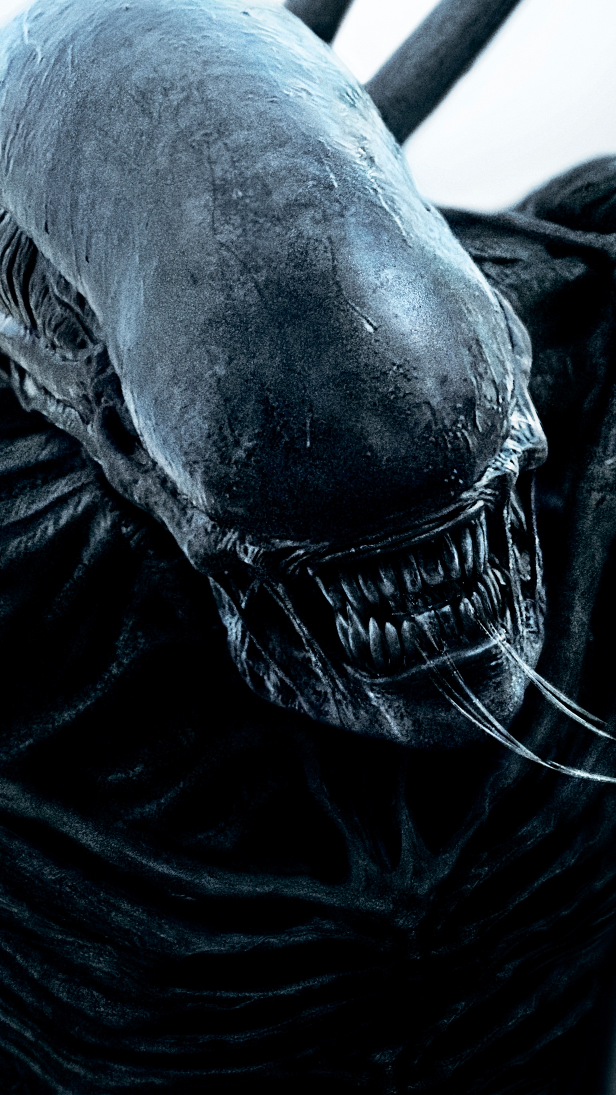 Wallpaper Alien Covenant 4k Hd Alien Monster Best